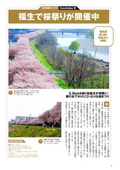 東京最新トピックス「福生で桜祭り」