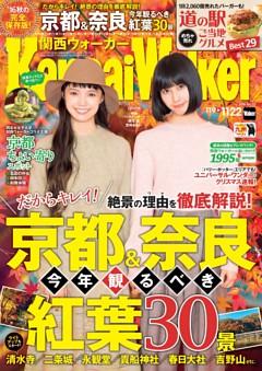 関西ウォーカー 2016年22号