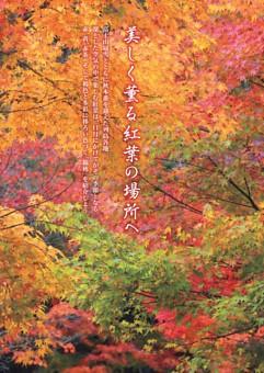 〔特集〕~多彩に色づく「錦秋」~ 美しく薫る紅葉の場所へ