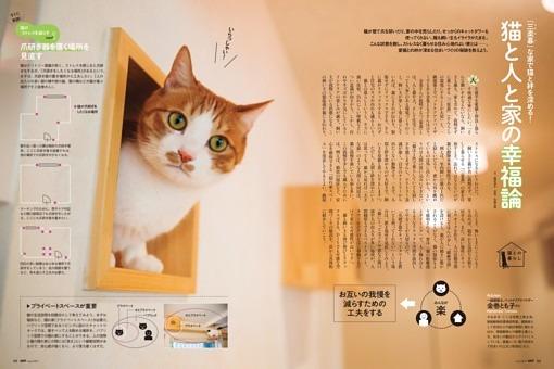 [猫との暮らし]猫と人と家の幸福論