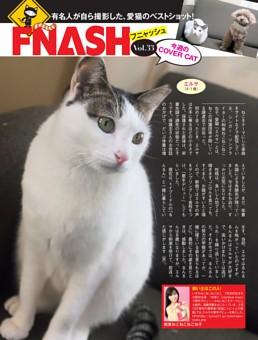 【連載】FNASH 今週のCOVER CAT