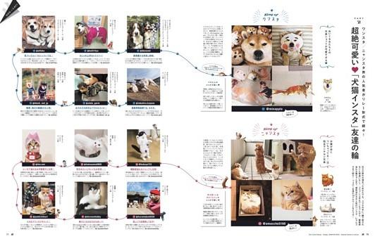 超絶可愛い 「犬猫インスタ」友達の輪
