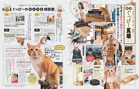 インスタ界のスーパー猫、ゆる~く降臨中…! 隔月ぐっぴー瓦版(かわらばん)