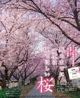 ニッポンの春大特集 Part2 全国を巡る風景写真家が厳選した〝春の絶景〟死ぬまでに一度は見てほしい桜