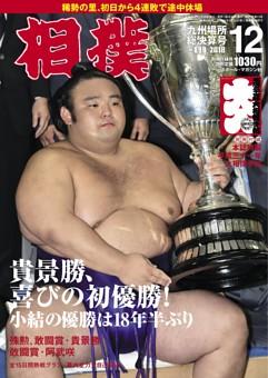 相撲 2018年12月号 九州場所総決算号